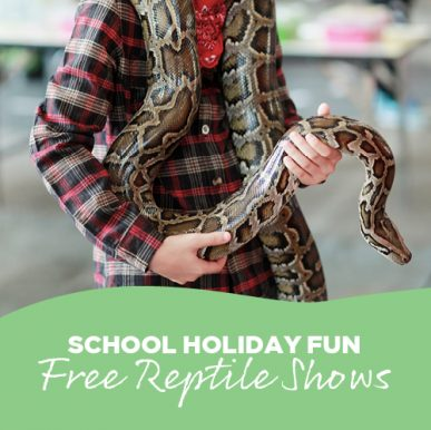 School Holiday – FREE Reptile Shows